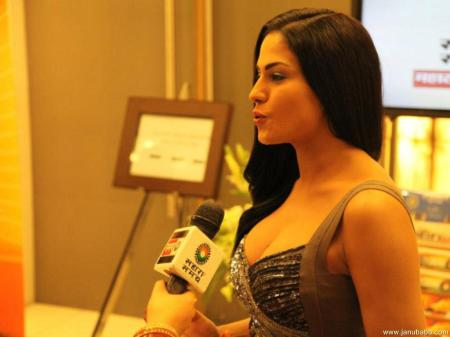 "Veena Malik could perhaps help Pakistanis deal with their addiction to ""bad"" porn."